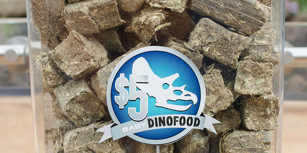 Baby-Dinofood